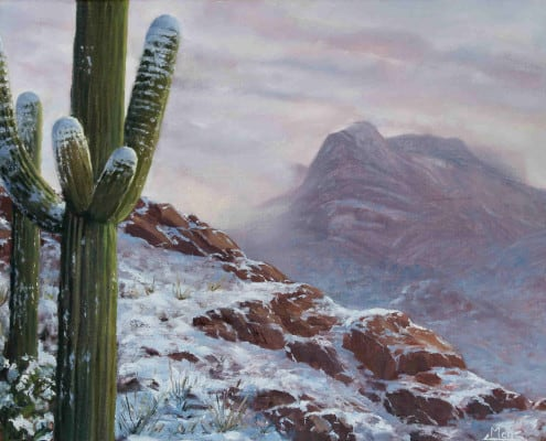 Resonance Theological Journal Meg Newberg Saguaro in the Snow